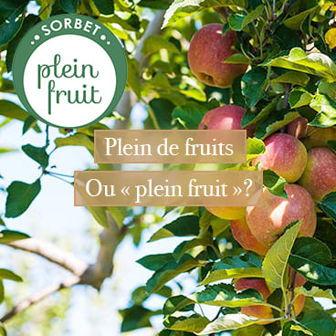 "Plein de fruits ou ""plein fruit"""