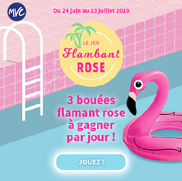 jeux boué flamand rose
