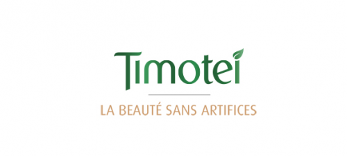 logo timotei sans artifice