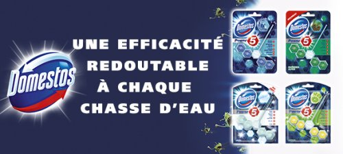 domestos bloc power