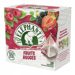 Infusion Fruits Rouges 20 Pyramid elephant
