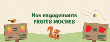 Fruits moches aussi bons PurFruit