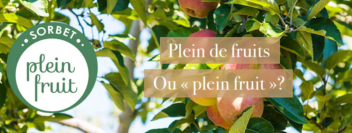 Carte d'Or_Plein fruit